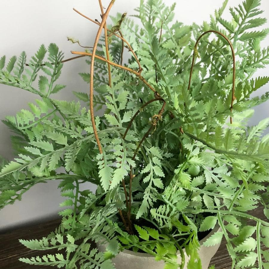 Artificial Green Painted Lady Fern In Grey Pot