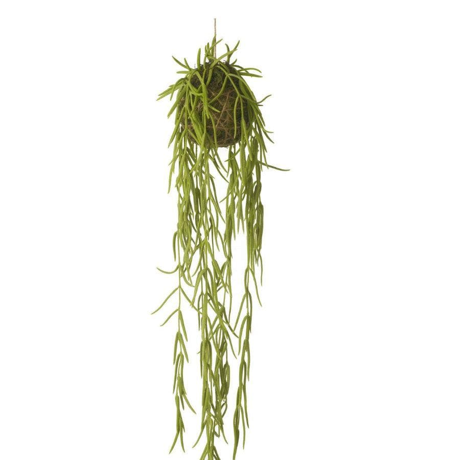 Artificial Hanging Hoya Linearis | The Farthing 2