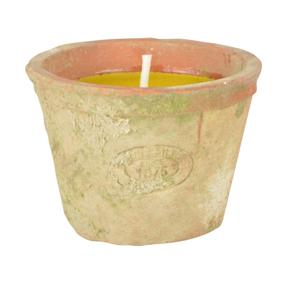 Citronella Candle In Rustic Pot at the Farthing