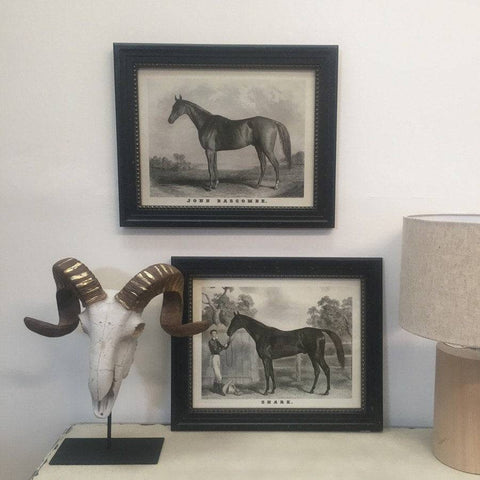 Distressed Framed Horse Pictures - The Farthing