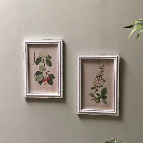 Distressed Vintage Parisian Flowers - set of two frames | Farthing