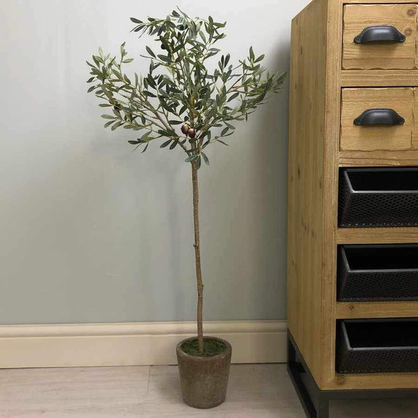 Faux Olive Tree in Garden Pot