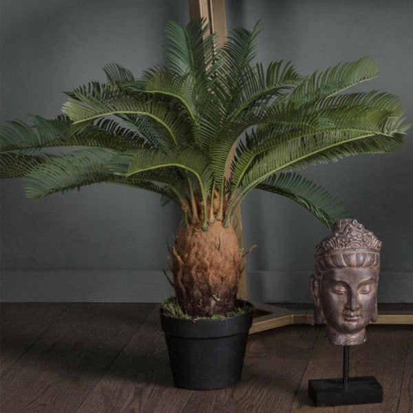 Faux Cycad Palm at the Farthing