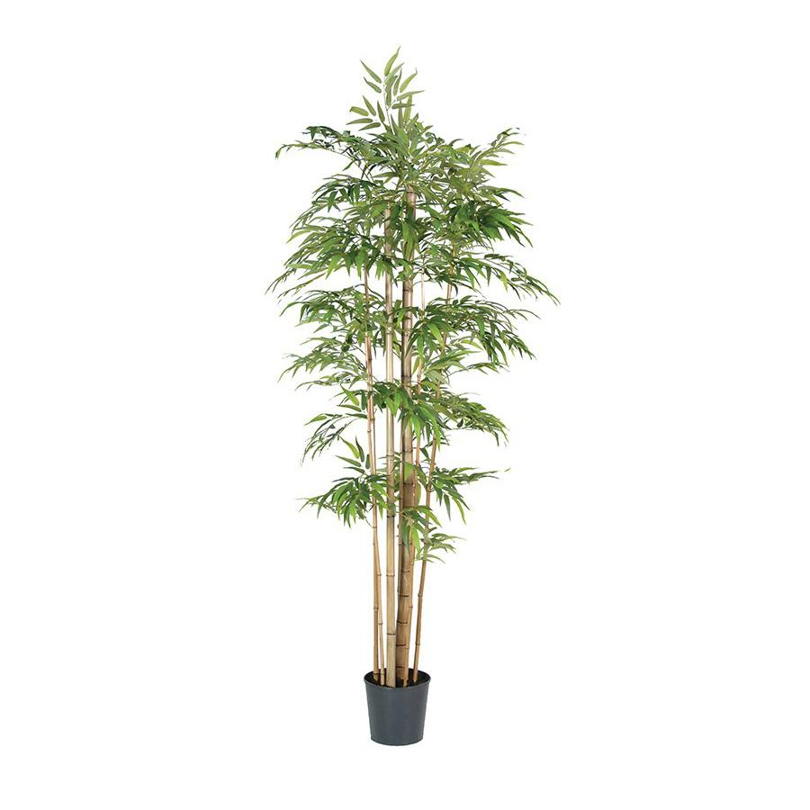 Giant Multi Stem Faux Bamboo Tree at the Farthing