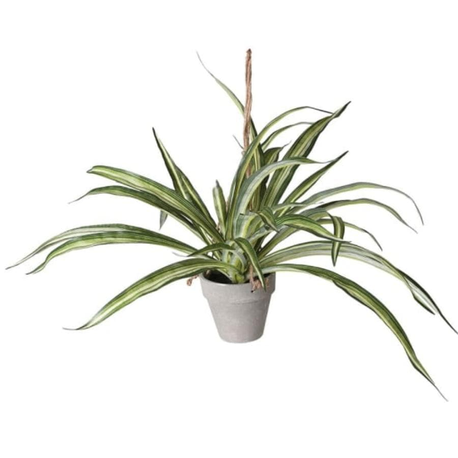 Artificial Potted Hanging Green Dracaena | The Farthing