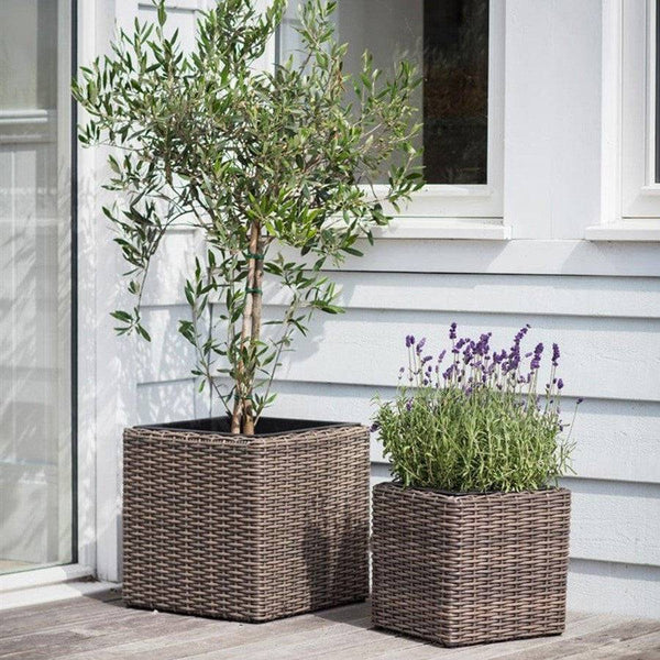 Hating Set of 2 Square Planters at the Farthing