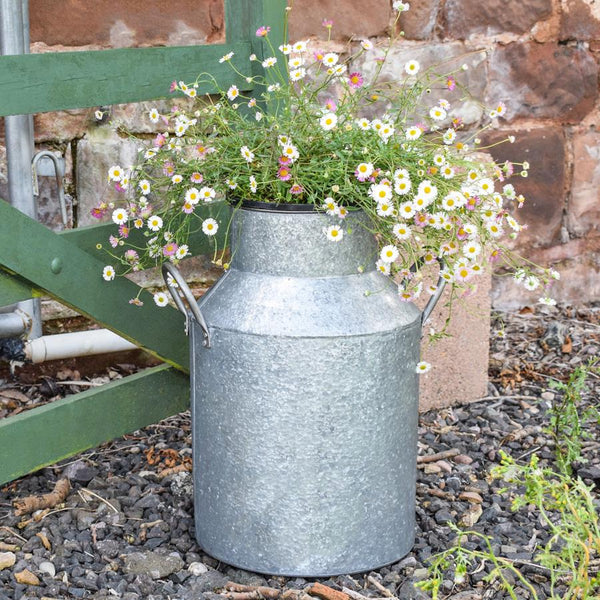 Large Galvanised Milk Churn Planter | Farthing