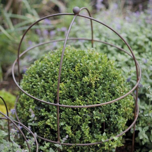Large Rustic Barrington Plant Support - The Farthing