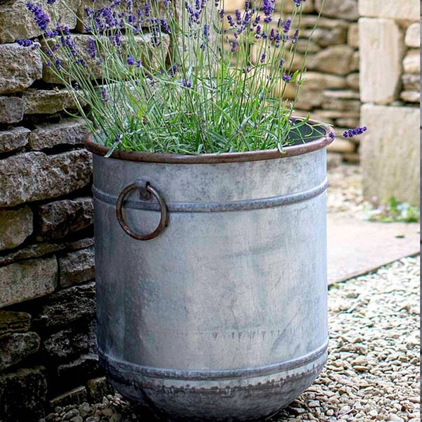 Large Rustic Malmesbury Galvanised Planter - The Farthing