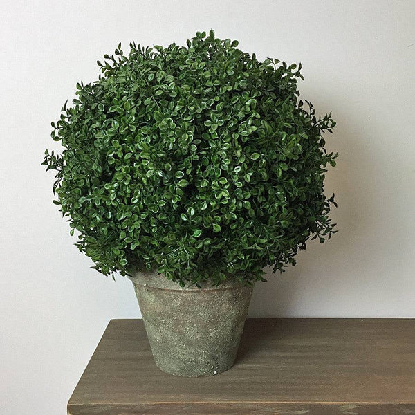 Large Rustic Potted Faux Boxwood - The Farthing