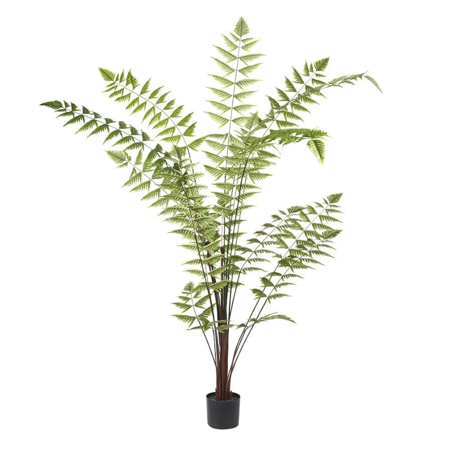 Large Faux Areca Fern Tree at the Farthing