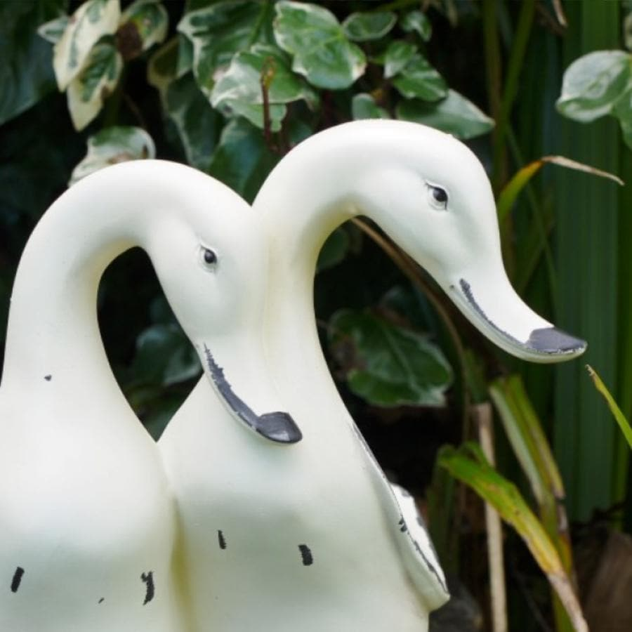 Pair of Distressed Ornamental Garden Ducks