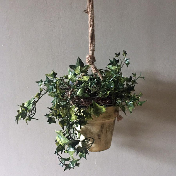 Potted Faux Hanging Ivy at the Farthing