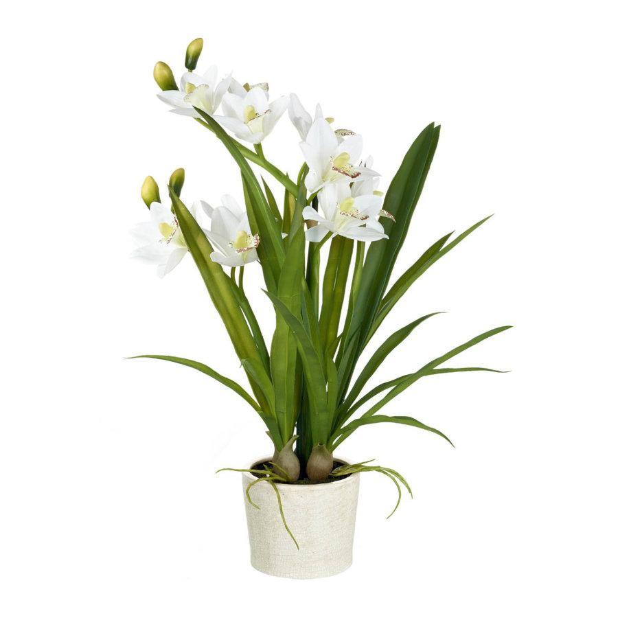 Potted Faux White Orchid the Farthing