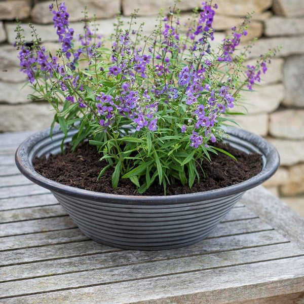 Rustic Charlbury Table Top Planter - Large - The Farthing