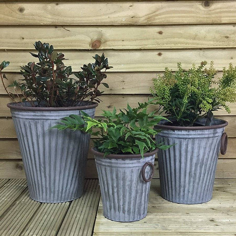 Rustic Fluted Malmesbury Galvanised Planter Set - The Farthing