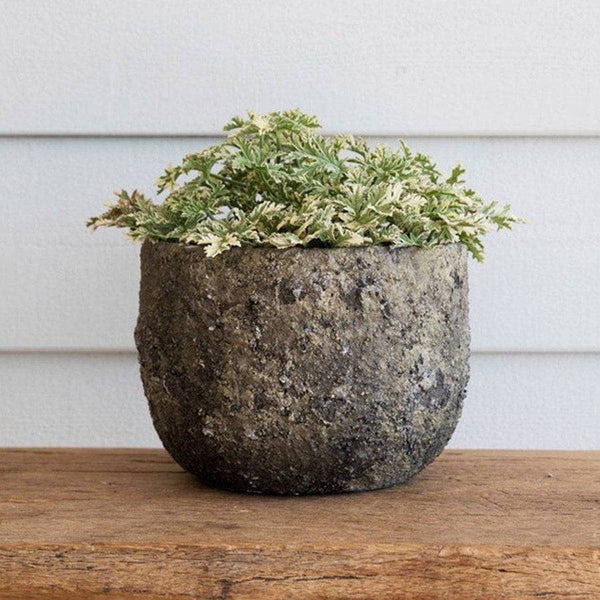 Rustic Lichen Plant Pot - The Farthing  - 1