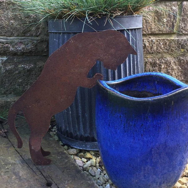 Rustic Rusty Peering Cat Silhouette - The Farthing