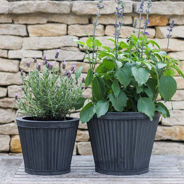 Rustic Set of Two Tapered Vence Planters - The Farthing