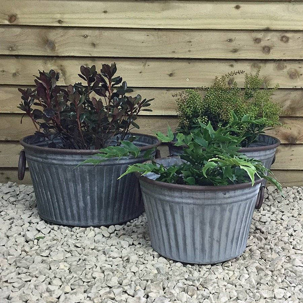 Rustic Shallow Malmesbury Galvanised Planter Set - The Farthing