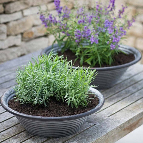 Set of 2 Rustic Galvanised Charlbury Table Top Planter Bowls - The Farthing  - 1
