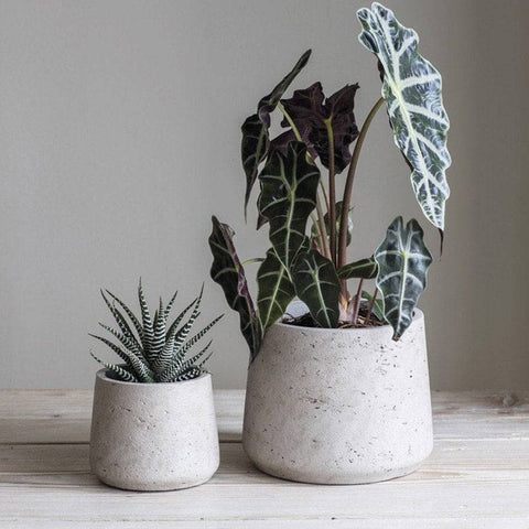Set of 2 Stratton Cement Plant Pots - Stone - The Farthing