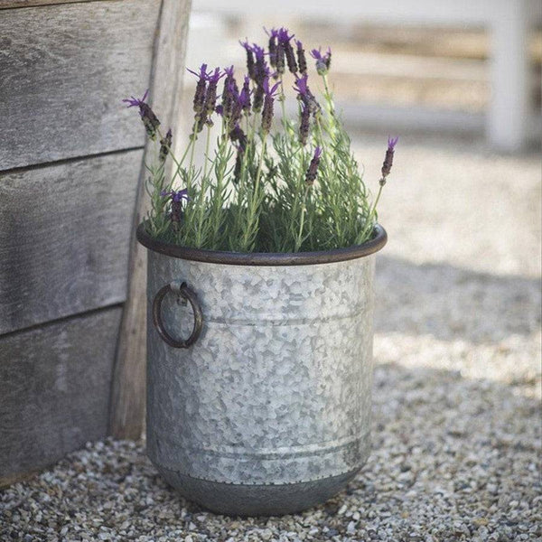 Small Rustic Malmesbury Galvanised Planter - The Farthing