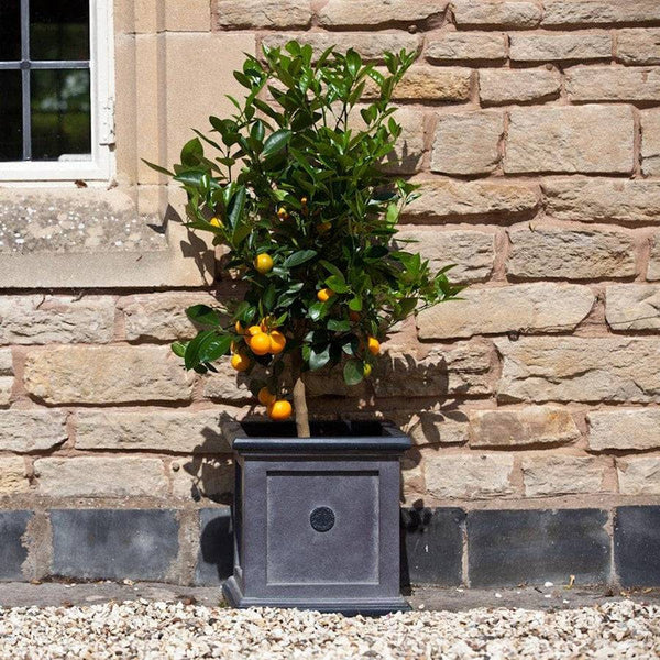 Square Royal Elite Planter in Grey - 40cm - The Farthing