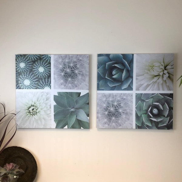 Succulents Wall Canvas - set of two at the Farthing 1