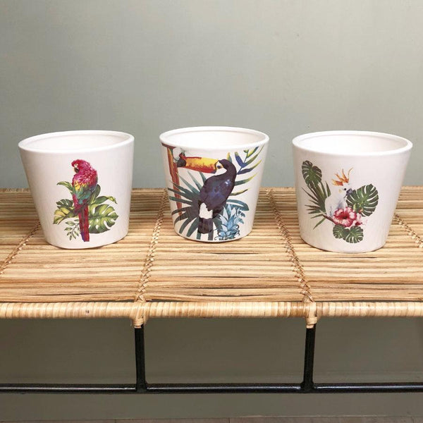 Tropical Birds Plant Pot Set at the Farthing 1