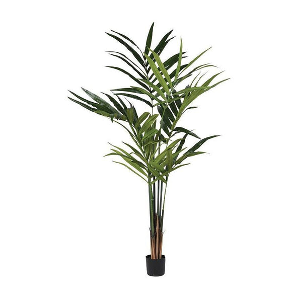 Tall Faux Kentia Palm - The Farthing