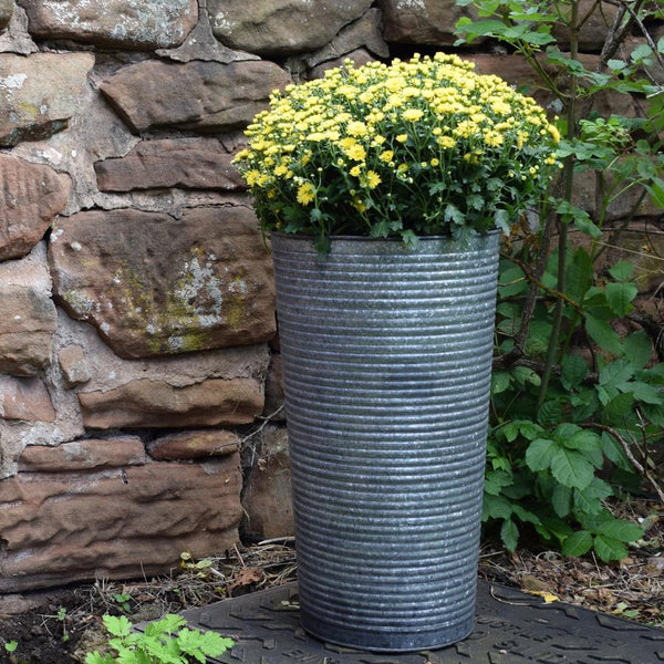 Tall Galvanised Swanage Planter | Farthing 2