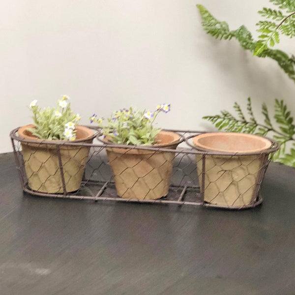 Three Rustic Terracotta Pots in Wire Basket | Farthing  2