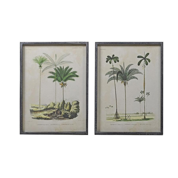 Vintage Palm Tree Illustrations - set of two | farthing