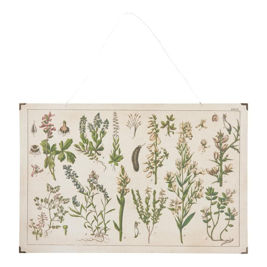 Vintage Botanical Flowers Wall Hanging at the Farthing 1