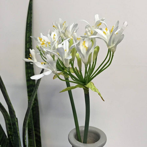 White Faux Agapanthus Flower Stem - The Farthing
