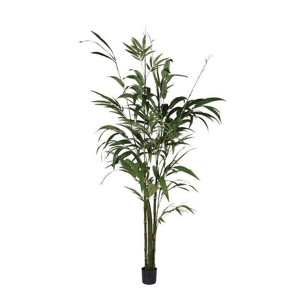 Tall Faux Green Bamboo Palm Tree - The Farthing  - 2