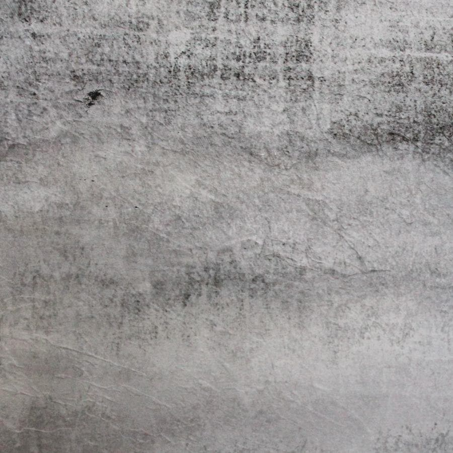 Misty Walk - Wall Canvas at the Farthing