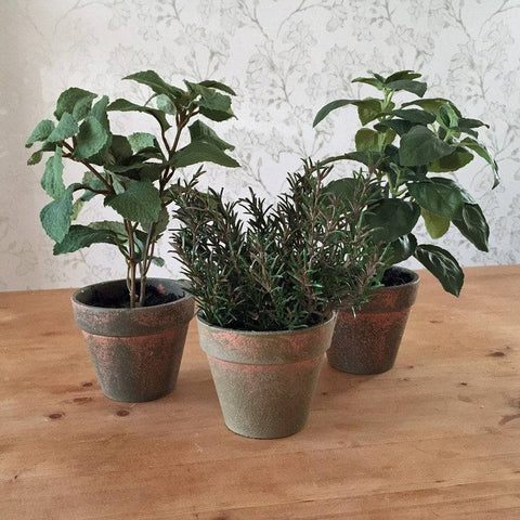 Potted Faux Kitchen Herb Set of Three - The Farthing