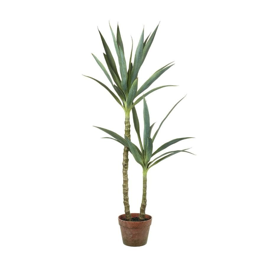 Faux Green Yucca Plant at the Farthing