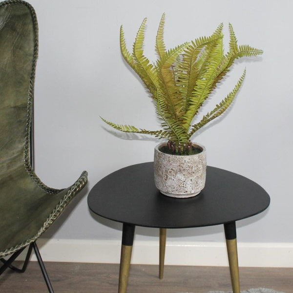 Rustic Potted Faux Bracken Fern | The Farthing 1