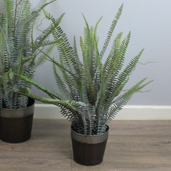 Tall Artificial Boston Fern at the Farthing 1