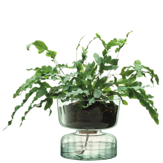 LSA International Canopy Self Watering Planter H22cm Clear/Part Optic