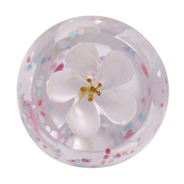 Caithness Blossom Paperweights - Ivory