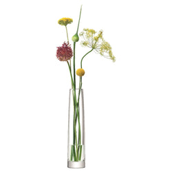 LSA International Stems Vase H30cm Clear
