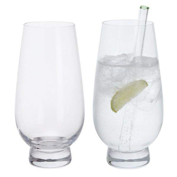 Dartington Gin Connoisseur Gin Highball Pair