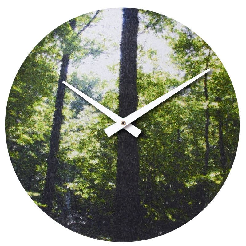 Handmade Original Woodsy Photo Print Vinyl Record Clock