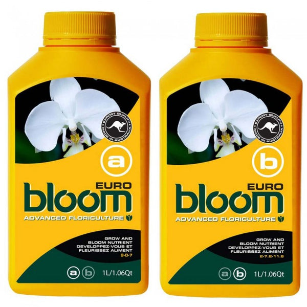 bloom Euro A&B  Set 1ltr