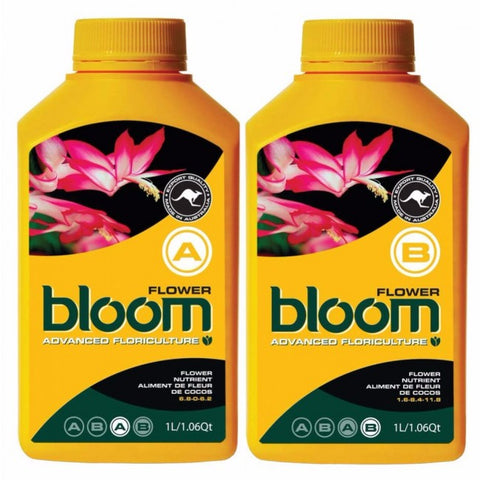 bloom Coco Flower A & B set  1ltr