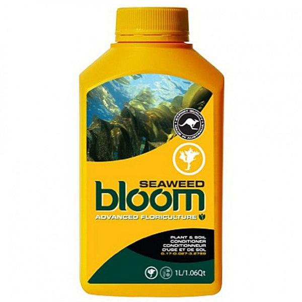 bloom SEAWEED  1ltr